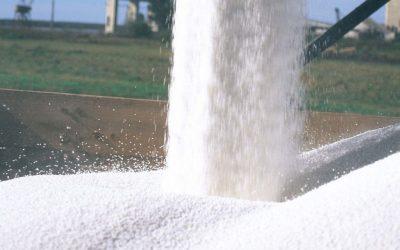 Demandantes y exportadores de fertilizantes en el mundo