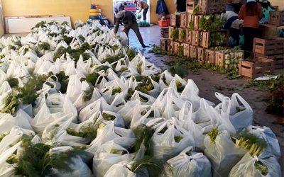 Donaron 13 mil kilos de verduras con las Bolsas Solidarias de la Agricultura Familiar