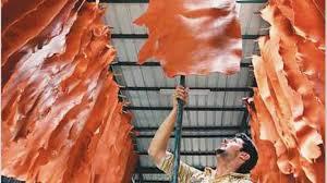 Gobierno suspende por 60 días las retenciones a las exportaciones de cueros
