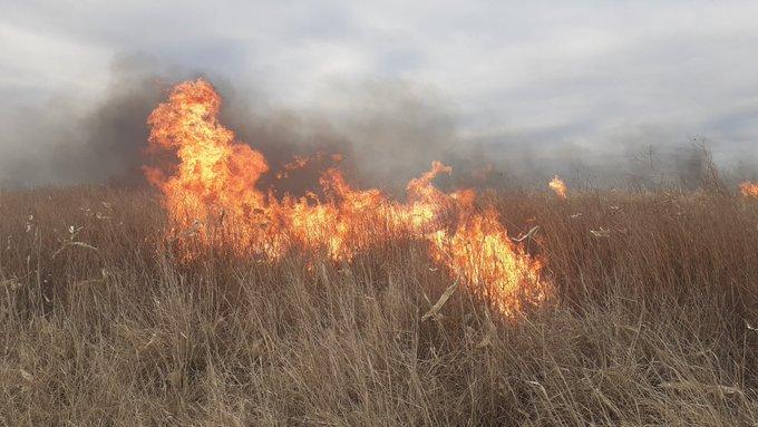 Alerta por un incendio en el campo del presidente de la Sociedad Rural de Río Cuarto