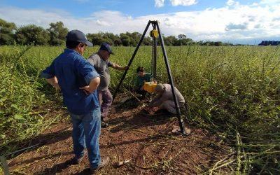 Ponen en funcionamiento una central solar para la producción de limones en Salta