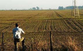 Bajan los costos de alquileres para los campos en la provincia de Córdoba
