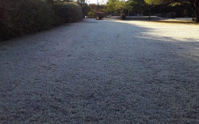 Prevén bajas temperaturas y precipitaciones escasas en la mayor parte del área agrícola