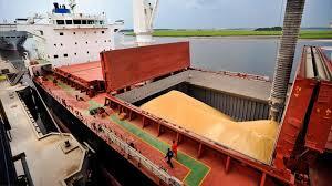Las exportaciones de los principales complejos agroindustriales alcanzaron un récord en el primer semestre del año