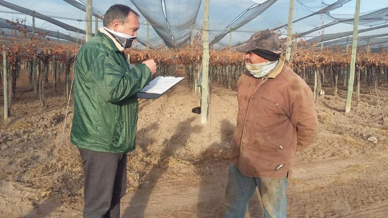 El RENATRE fiscalizó trabajadores frutícolas, olivícolas, avícolas y de pasturas en Mendoza