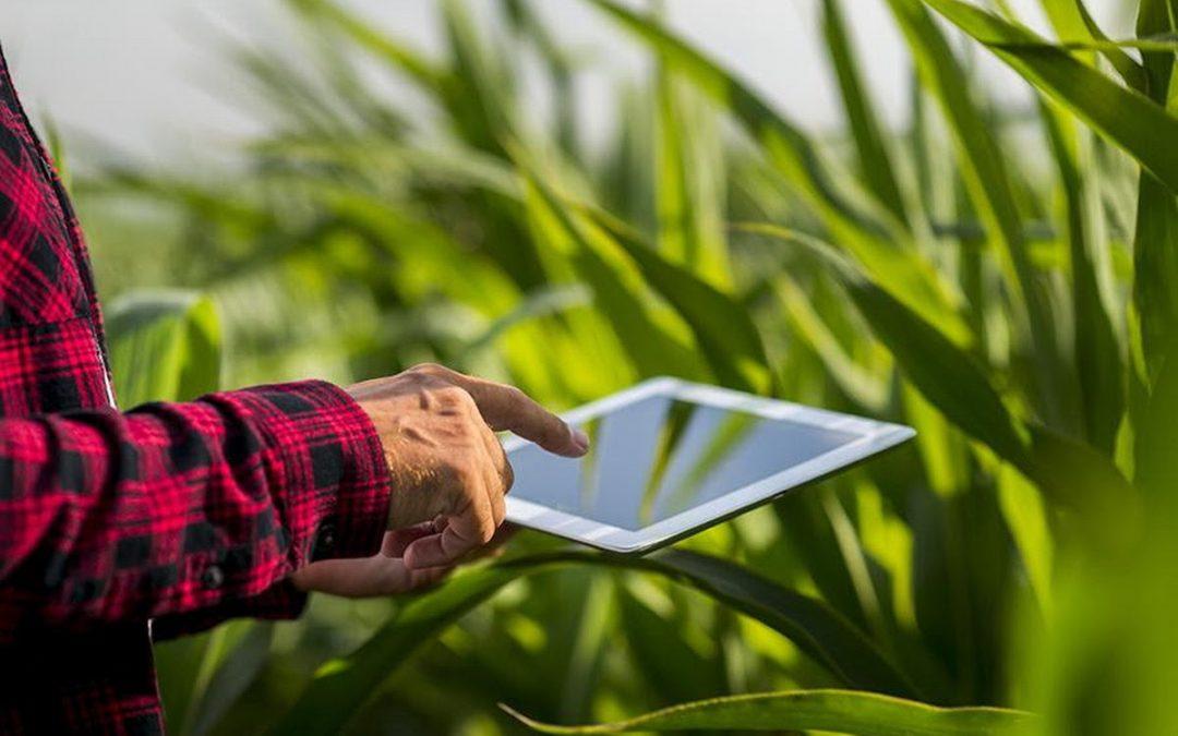 El contexto actual apura la digitalización en máquinas agrícolas