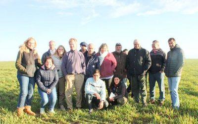 El grupo de productores que se unió para llegar con la carne ovina a la mesa de los argentinos