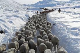 CRA y la situación climática en Patagonia