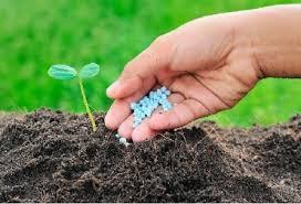 Una ley para mejorar los suelos agropecuarios