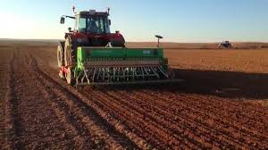 A punto de finalizar la siembra del trigo de la nueva campaña