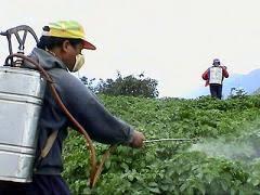 La producción de agroquímicos creció 11 por ciento en los  primeros seis meses