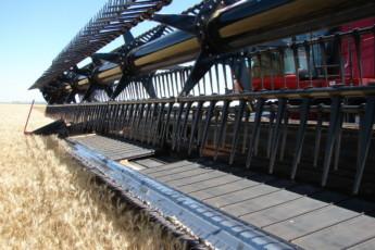 Las cosechadoras demandan un mayor recambio para bajar la obsolescencia