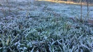 Vigorosa entrada de aire polar, seguida por el aumento de temperatura y precipitaciones escasas