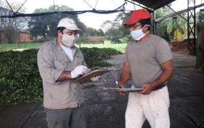 El RENATRE relevó la situación de 328 trabajadores en Misiones