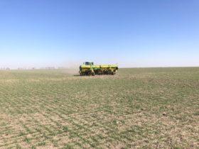 Alerta: el sector norte de la principal zona agrícola argentina se encuentra en emergencia agropecuaria