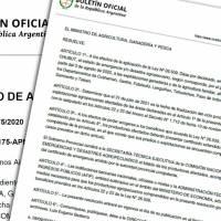 Agricultura declaró la emergencia por nevadas en Chubut