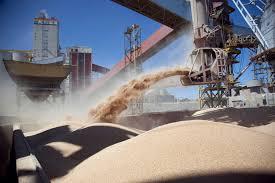 El 46,6% de los ingresos de exportaciones provienen del maíz y la soja