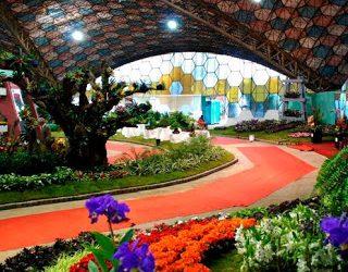 La Fiesta Nacional de la Flor de Escobar, se realizará de forma virtual a partir de mañana