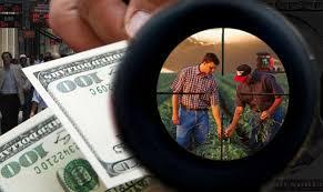 Mercado de granos con ofertas dispares