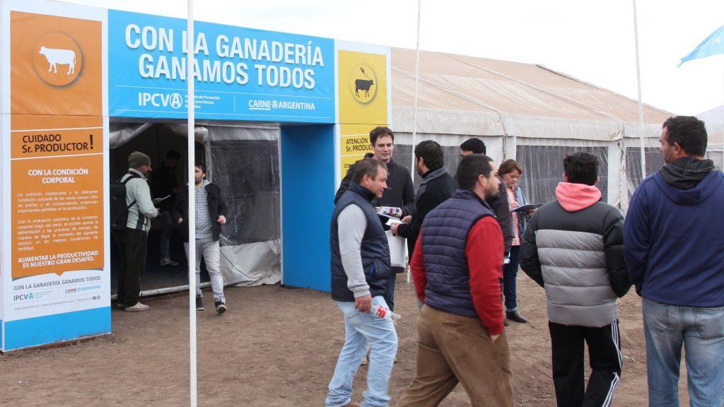 El IPCVA será nuevamente sponsor del sector ganadero de la mega muestra AgroActiva, esta vez en su modalidad digital.