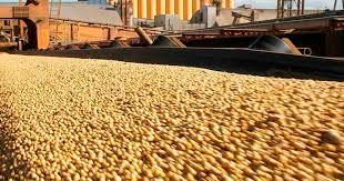 En un contexto de pandemia, las exportaciones agroindustriales sostienen el ingreso de dólares al país