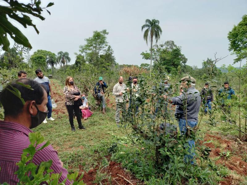El RENATRE finalizó las primeras dos capacitaciones a Tareferos en Misiones