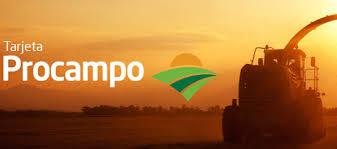Banco Provincia: $ 7 mil millones para financiar al agro con tasa 0%