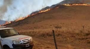 Incendios en Córdoba: 249 productores perdieron animales, colmenas y vegetación por las llamas