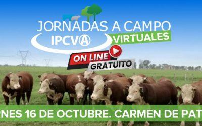 Se viene una nueva jornada a campo virtual en Carmen de Patagones