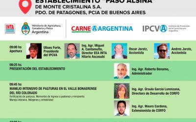 16 de octubre nueva jornada a campo del IPCVA en Patagones