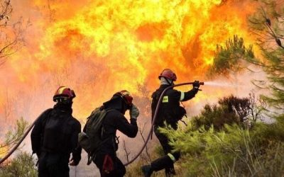 """Expertos se unen para debatir sobre la """"Prevención y presupresión de incendios forestales: experiencias nacionales e internacionales"""""""