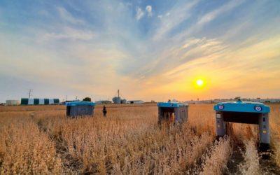 """Google trae a la Argentina los robots que monitorean """"planta por planta"""""""
