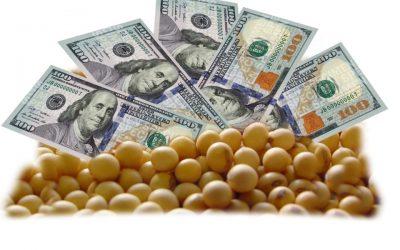 Sigue la suba de los precios de la soja en Chicago