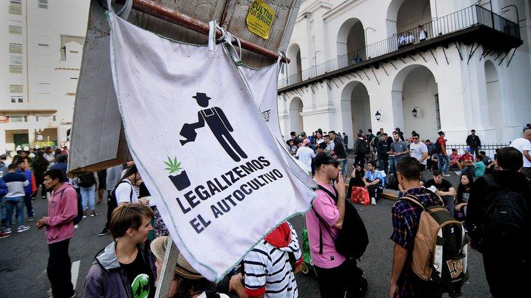 Cannabis: el Gobierno legalizó el autocultivo para uso medicinal y el expendio de aceites en farmacias