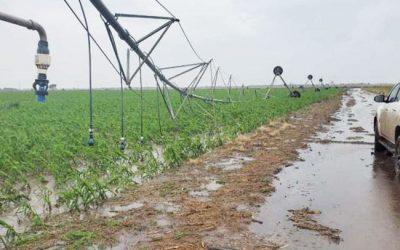 Norte de Córdoba: 100 mm. en Cañada de Luque, corte de Ruta 17 y daños en la zona rural