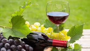 Día del Vino Argentino Bebida Nacional: Agricultura destacó la recuperación del sector tanto en el mercado doméstico, como en las exportaciones