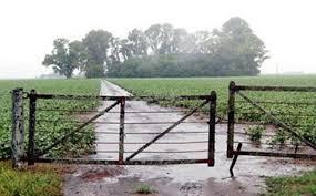 Vasto despliegue de precipitaciones: las lluvias encontraron piso en los cuarenta milímetros