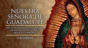 Hoy se celebró el Día de la Virgen de Guadalupe, Patrona de América