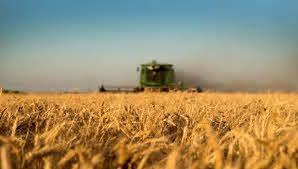 La provincia de Buenos Aires da inicio formal al programa de mejoramiento y diferenciación para la calidad del trigo