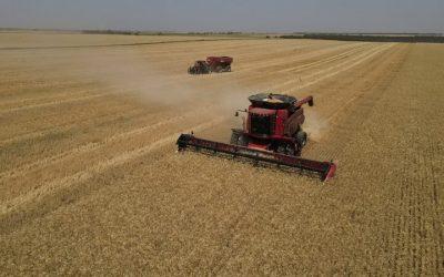 Maquimaria Agrícola: expectativas para  2021