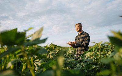 La incertidumbre sobre las políticas agropecuarias desgasta la confianza de los productores, según informe académico