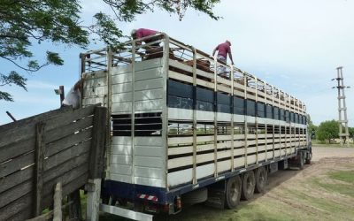 Tras el ataque al camión de hacienda, transportistas señalan los puntos más peligrosos y piden mayor seguridad