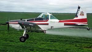 Con los cultivos de servicio se puede bajar un 50% en el impacto ambiental