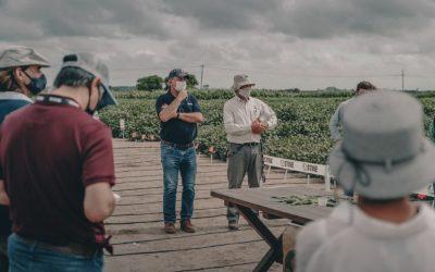 STINE semillas abrió sus puertas a la prensa, asesores y multiplicadores.
