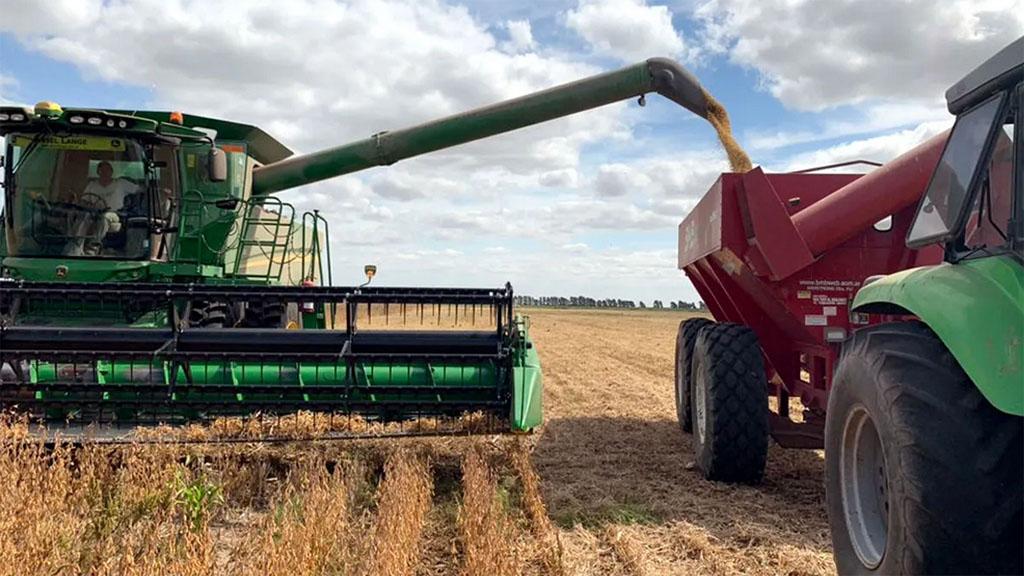 Comienzan las labores de cosecha de soja en gran parte del área agrícola nacional.