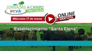 Nueva jornada ganadera del IPCVA en Guaminí, Provincia de Buenos Aires, llega este 17 de marzo