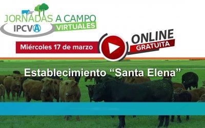 Nueva jornada ganadera virtual del IPCVA en Guaminí, Provincia de Buenos Aires