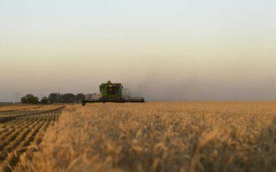 Siete de cada diez empresarios agropecuarios prevé realizar inversiones este año