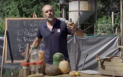 Talleres virtuales de huerta agroecológica, gratis y por Youtube y Facebook: cómo ingresar
