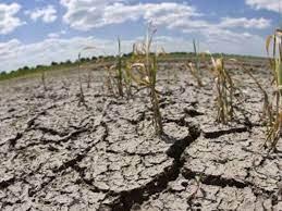 Agricultura declaró la emergencia agropecuaria en Catamarca y la prorrogó en Chaco